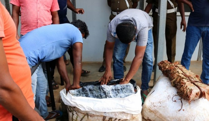 820 Kgs of tobacco leaves seized from Mannar