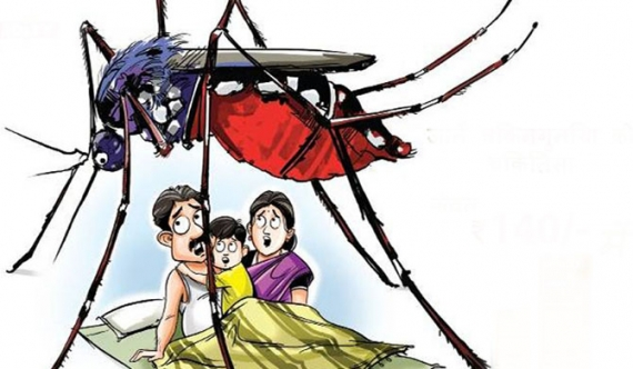 Dengue threatens 5 districts due to rain