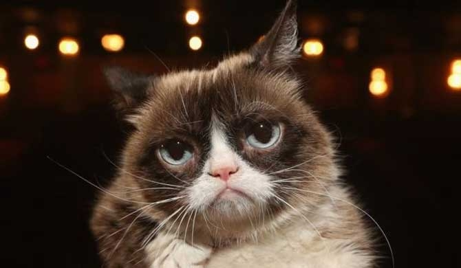Grumpy Cat no more