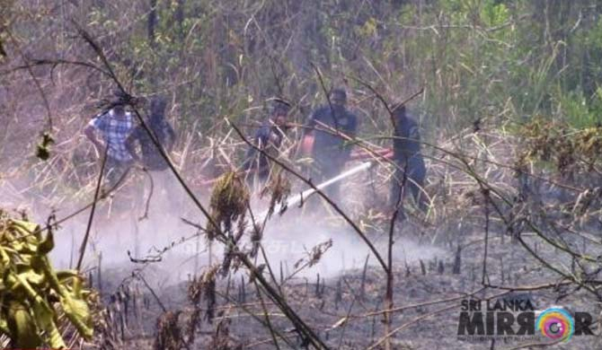 Fire at Batticaloa bird sanctuary