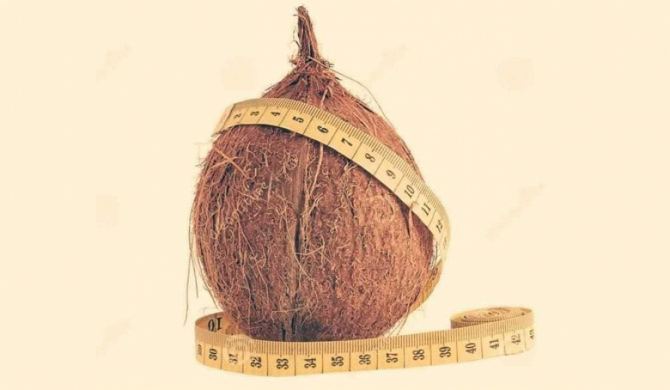 Coconuts to be measured by weight instead of circumference?
