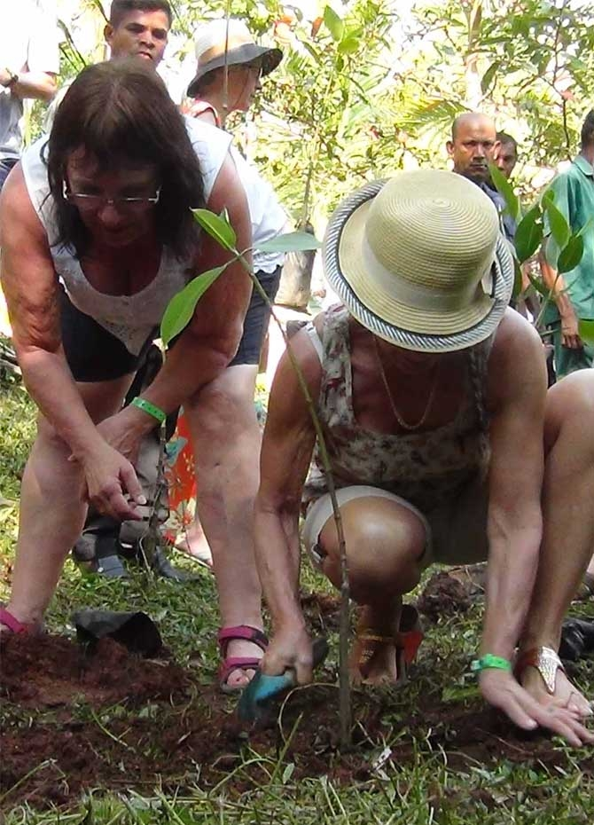 Foreigners plant trees in Sri Lanka on April Fools' Day (Pics)