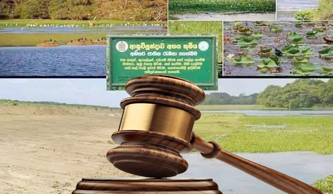 Anawilundawa Wetland clearing: Businessman, backhoe driver granted bail