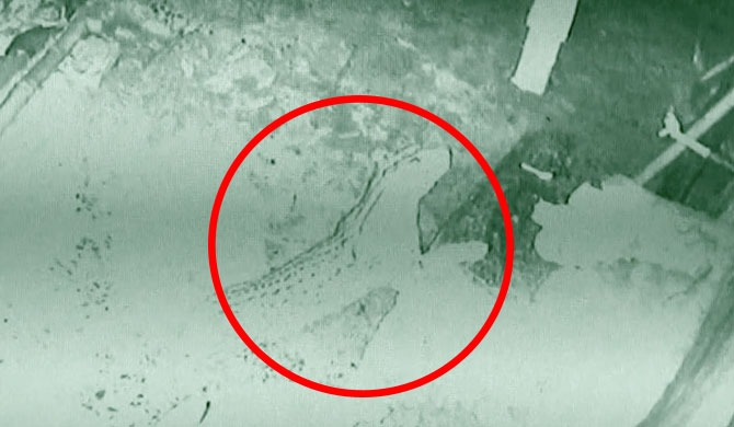 CCTV reveals the strange thieves in Nawalapitiya (Video)