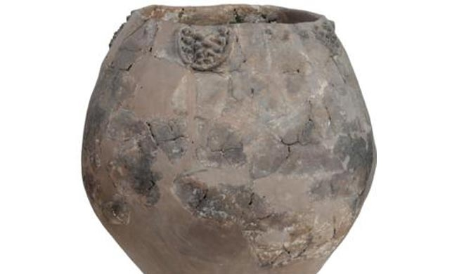 'World's oldest wine' found in Georgia