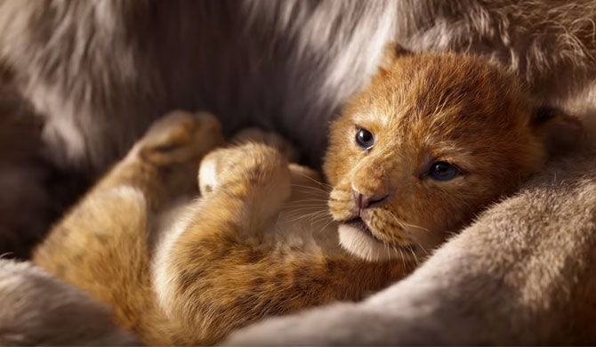 The Lion King hits $1bn box office mark